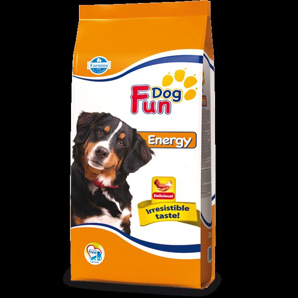 Fun Dog Energy
